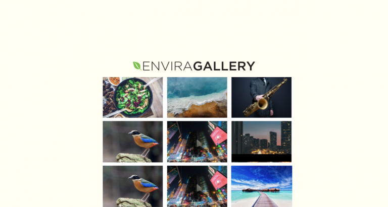 Envira Gallery Review: A Responsive Gallery Plugin for WordPress